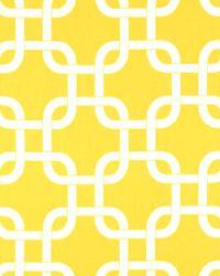Gotcha Corn Yellow Twill by