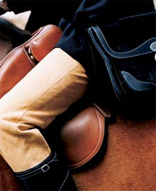 English Riding Velvet Ralph Lauren Fabrics