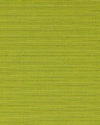 Solar Kiwi by