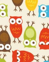 Urban Zoologie Owls Bermuda by