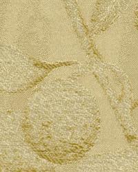 Dorlisa Parchment by