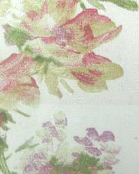 Painted Garden Tulip by  In Stock