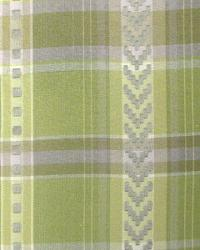 Stitched Check Leek by