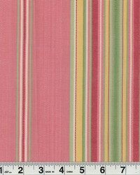 Carnival Pink by