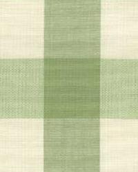 Lyme Sagegrass by