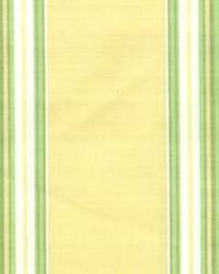 Taffeta Stripe Citrus by
