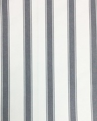 Sheldon and Barnett Stryper Charcoal Cream Fabric