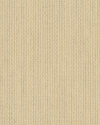 Sunbrella Spectrum Sand Fabric