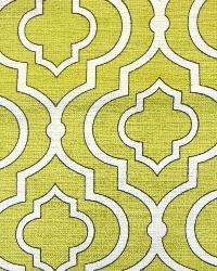 Swavelle-Millcreek Donetta Sussex Sprout Fabric