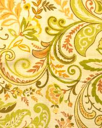 Swavelle-Millcreek Findlay Cliffside Apricot Fabric