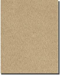 Tempo Plush Suede Camel Fabric
