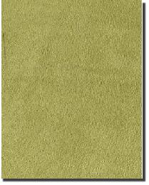 Tempo Plush Suede Kiwi Fabric