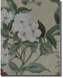 Beige Medium Print Floral Fabric  Waverly Garden Images Parchment