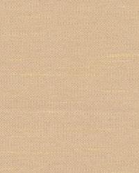 Beige Antique Satin Fabric  Chorus Driftwood