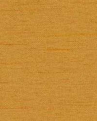 Orange Antique Satin Fabric  Chorus Pony