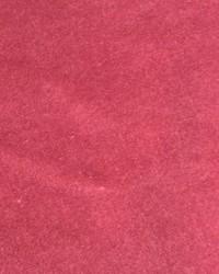 CW Velveteen Dusty Rose by
