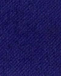 CW Velveteen Purple Iris by
