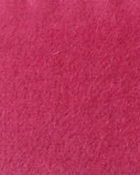 CW Velveteen Raspberry by