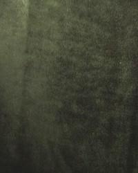 Furnishings Velvets Fabric  Rhapsody Velvet Emerald