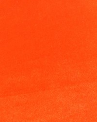 Stretch Knit Velvet Neon Orange by
