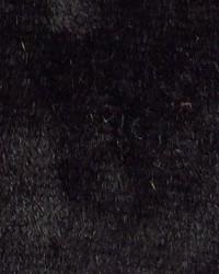 Black Furnishings Velvets Fabric  Twinkle Shimmer Velvet Black