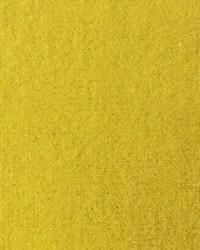 Venus Yellow by