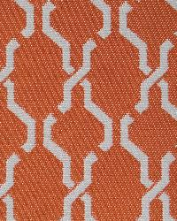 Como Orange by  World Wide Fabric, Inc.