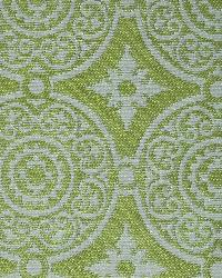 Green Suzani Fabric  Taza Apple