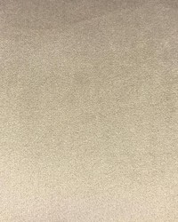 VELLUTO Taupe by