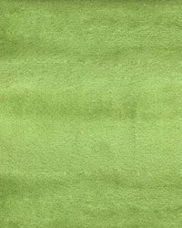Global Textile Velluto Apple Velvet Fabric
