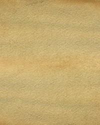 Velluto Gold Velvet by