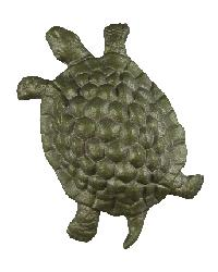 Turtle Rosette by