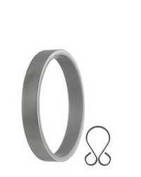 Ring with Insert Clip by