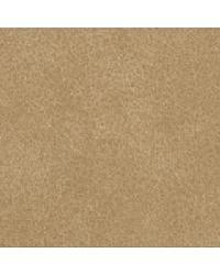 Coach Prarie Dog by  Bolta-Boltatex Wallcovering