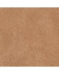Coach Terracotta by  Bolta-Boltatex Wallcovering