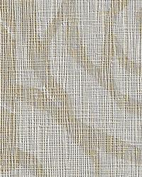 Charmer Freshwater Pearl by  Bolta-Boltatex Wallcovering