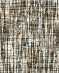Charmer Wink by  Bolta-Boltatex Wallcovering