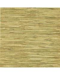 Lepeka Green Grasscloth by