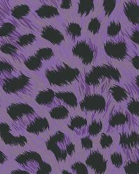 Kitty Purry Purple Leopard Print by