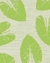 Lolani Light Green Banana Leaf by