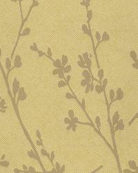 Forsythia Yellow Twiggy by