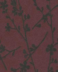 Forsythia Burgundy Twiggy by