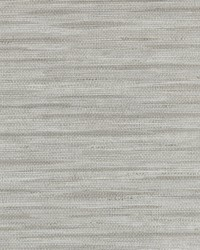 Horizon Line Misty Griege by  Genon