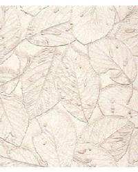 Botannica Ash by  Versa
