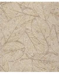 Botannica Bay Leaf by  Versa