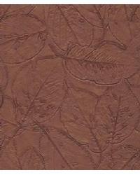 Botannica Terrawood by  Versa