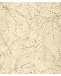 Botannica Watercress by  Versa