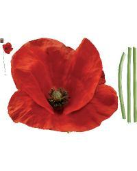 Cotlicoque - Poppy by