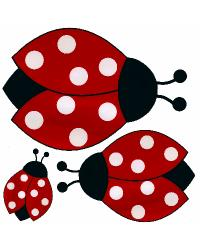 Lady Bugs by