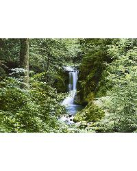 279 Waterfall in Spring by